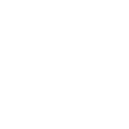 logo BLU agency network